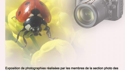 « Regards Nature » : Une exposition de photos des Amis de la Nature
